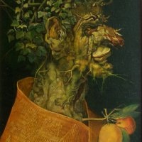 Learning from Arcimboldo. Winter